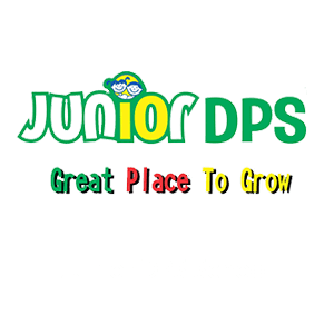 Junior DPS School